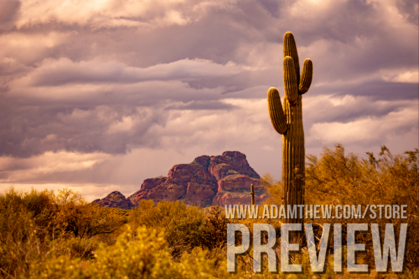 Post-Monsoon Red Mountain Landscape