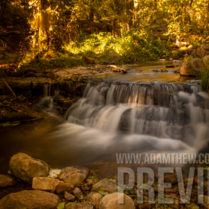Autumn Day At Horton Creek