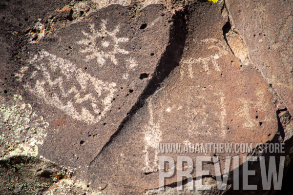 Picture Canyon Petroglyphs Panel