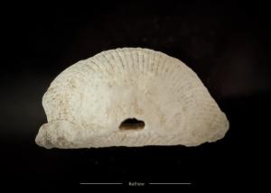 Ancient Hohokam Shell Jewelry Overview